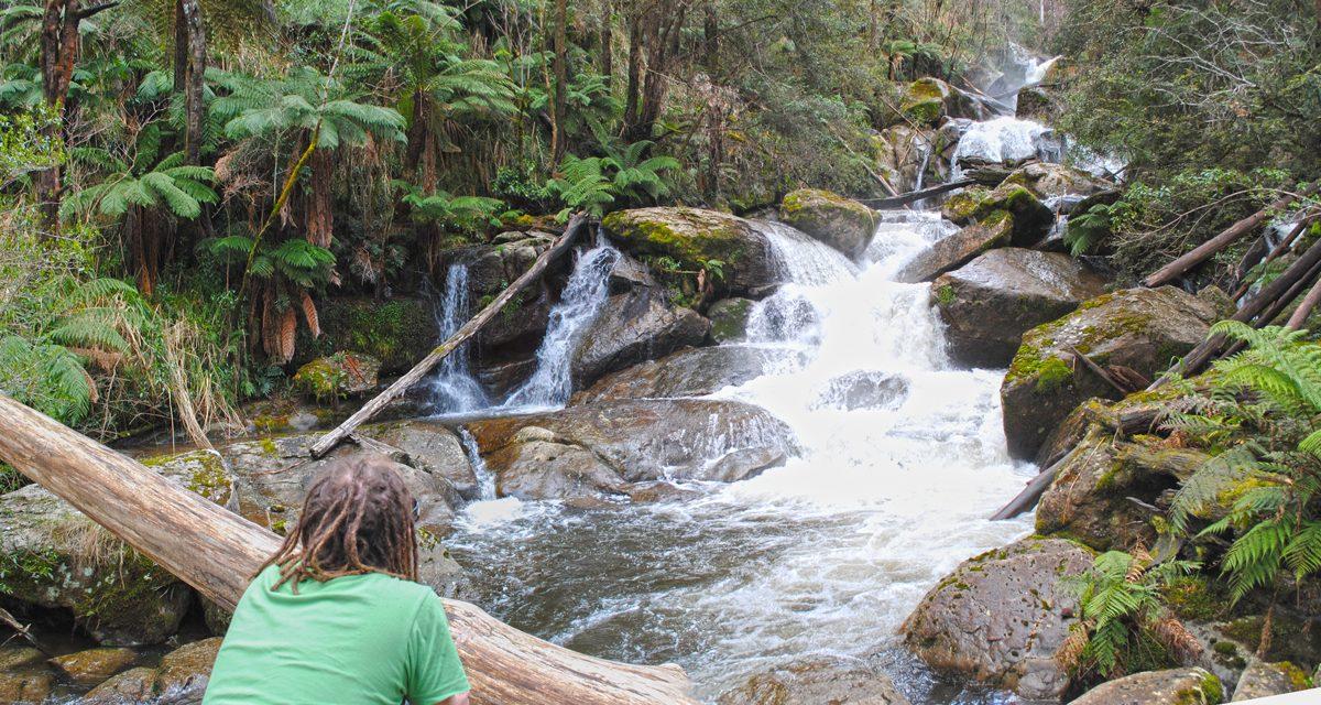 Keppel Falls – Lady Talbot Drive – Yarra Ranges National Park – Victoria