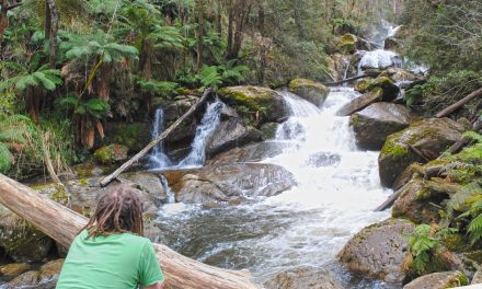 Keppel Falls – Lady Talbot Drive – Yarra Ranges National Park – Victoria