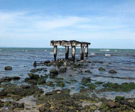 Point Cooke & Cheetham Wetlands – Victoria