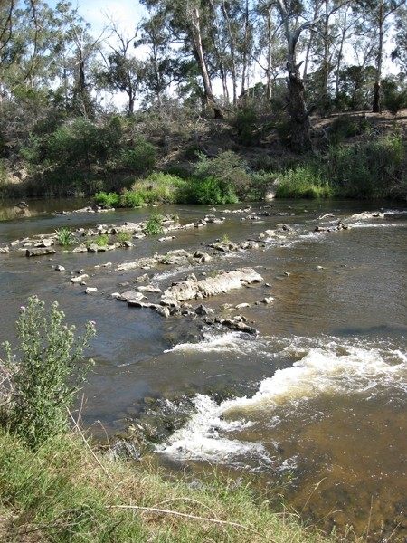 Melbourne Park Walk: Sweeneys Flats to Griffith Park – Eltham – Victoria