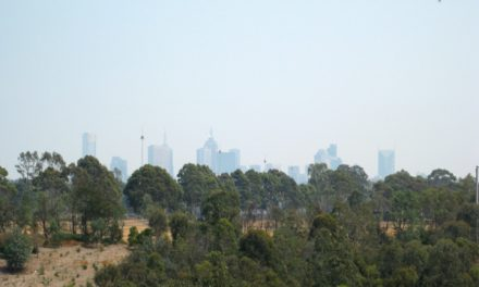Melbourne Park Walk: North East Circuit Walk – Yarra Bend Park – Kew – Victoria