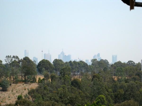 Melbourne Park Walk: North East Circuit Walk – Yarra Bend Park – Kew – Victoria