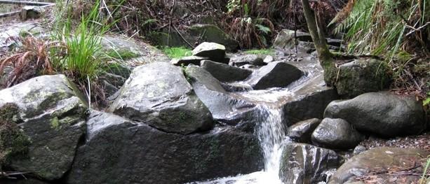 Olinda Falls & Cascade Walk – Dandenong Ranges National Park – Olinda – Victoria