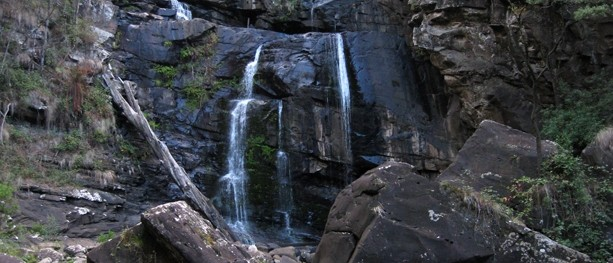 Stevensons Falls – Great Otway National Park – Apollo Bay – Victoria