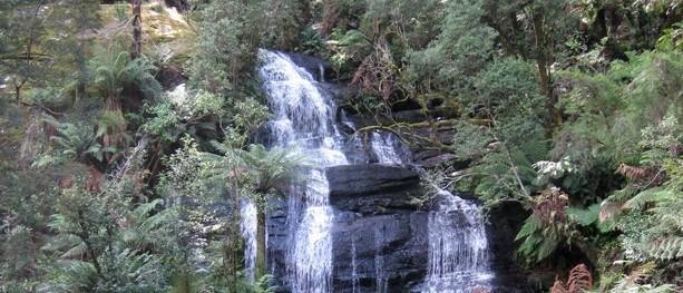 Triplet Falls – Great Otway National Park – Lavers Hill – Victoria