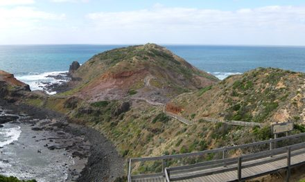 Cape Schanck Walk – Mornington Peninsula National Park – Flinders – Victoria
