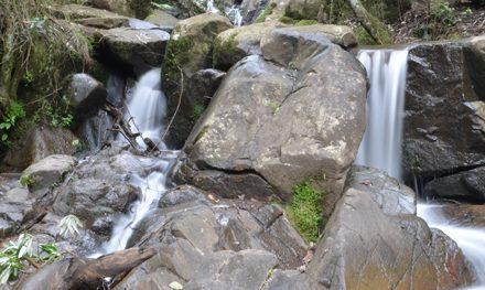 Olinda Falls Circuit – Dandenong Ranges National Park – Kalorama – Victoria