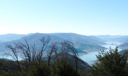Melbourne Day-Walk: Blowhard Circuit – Lake Eildon National Park – Alexandra – Victoria