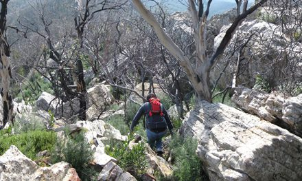 Melbourne Day-Walk: Cathedral Range Southern Circuit – Cathedral Range State Park – Buxton – Victoria