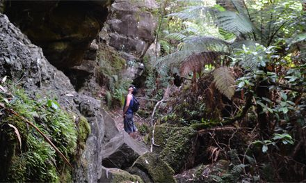 The Canyon – Great Otway National Park – Lorne – Victoria