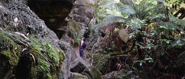 The Canyon Hike – Great Otway National Park (Lorne, Victoria)
