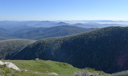 News: Mount Bogong Conquestathon – 11th March 2012