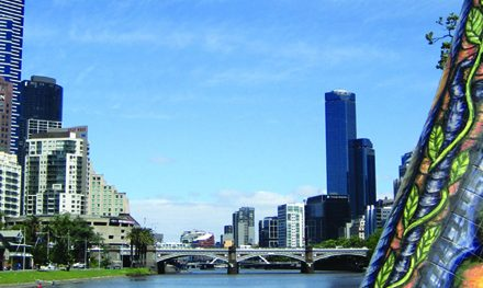 News: Melbourne's Best Bush, Bay & City Walks Competition Winners