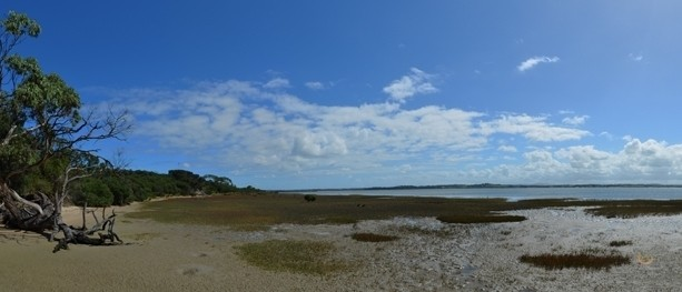 Anderson Inlet - Intertidal Mudflats - Cape Liptrap Coastal Park - Venus Bay - Victoria