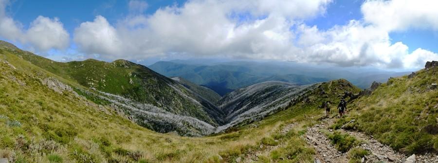 Descending Eskdale Spur - Mount Bogong - Alpine National Park - Victoria