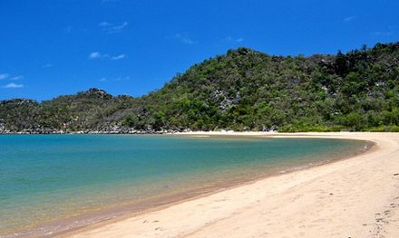 Video: World War II heritage and sober koalas: Hiking Queensland's Magnetic Island