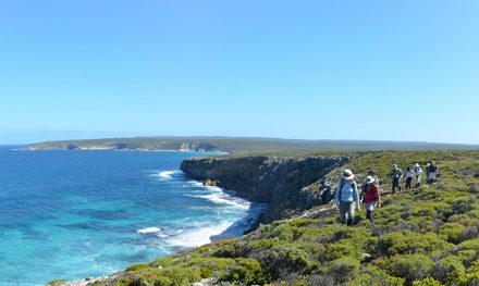 A penny for your thoughts? Have your say on a new Kangaroo Island multi-day hiking trail