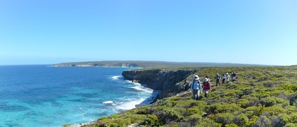 Kangaroo Island: Dramatic coastlines, off-track hiking, and a bit of luxury