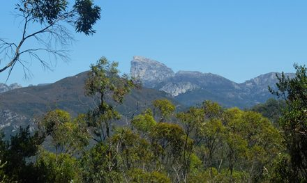 Tasmania's Frenchmans Cap: A magical scramble to a quartzite peak
