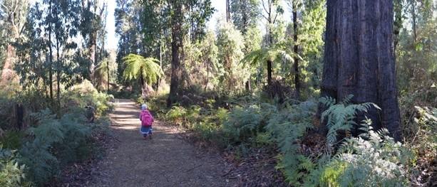 Marysville Beauty Spot Trail