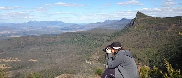 Mount Cordeaux - Main Range National Park - QLD