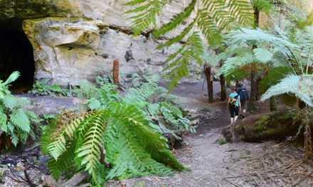 A week in the Blue Mountains – Part 5: The Newnes Glow Worm Tunnel & Wolgan View Canyon with Blue Mountains Guides