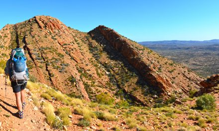 The Larapinta Trail Super 6: A guided adventure in Australia's Red Centre – Part 1