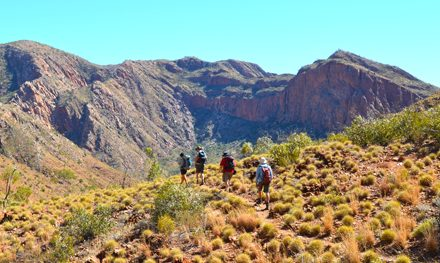 The Larapinta Trail Super 6: A guided adventure in Australia's Red Centre – Part 2