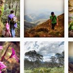 Do you even Instagram, bro? Oh, you do? Then come check out my hiking photos