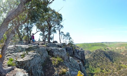 Falcons Lookout: The easiest way to see Werribee Gorge
