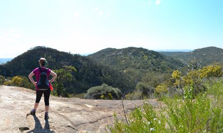 Testing out the bung knee: East-West Walk & Flinders Peak – You Yangs Regional Park