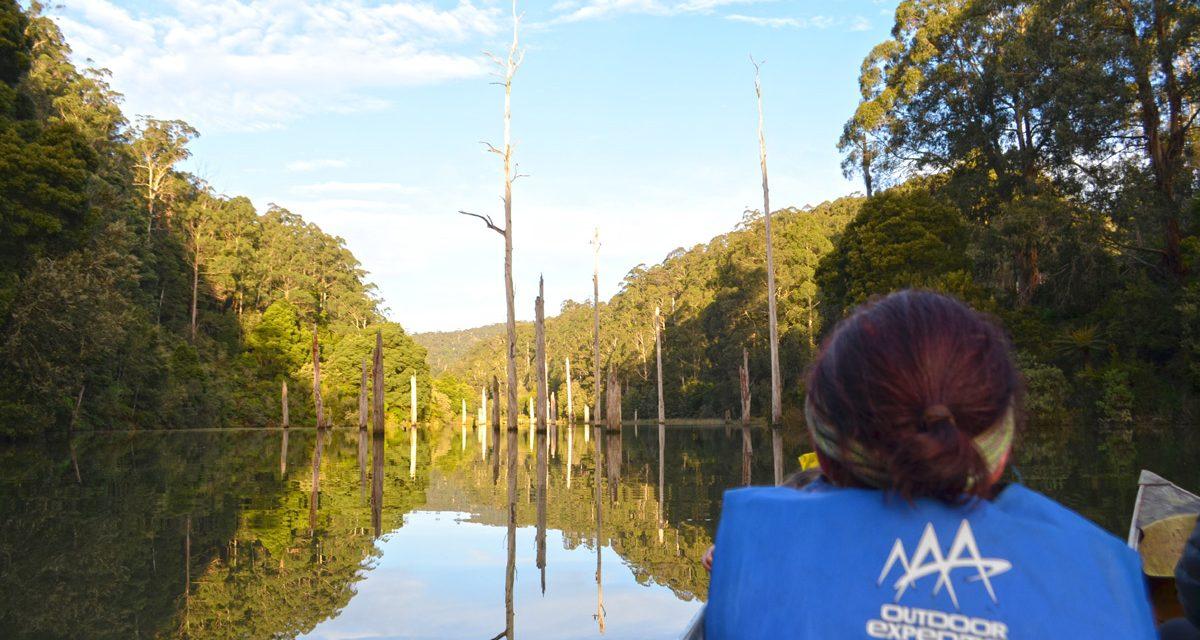 An Otways Long Weekend – Part 3: E-biking, platypus spotting, and Carisbrook Falls