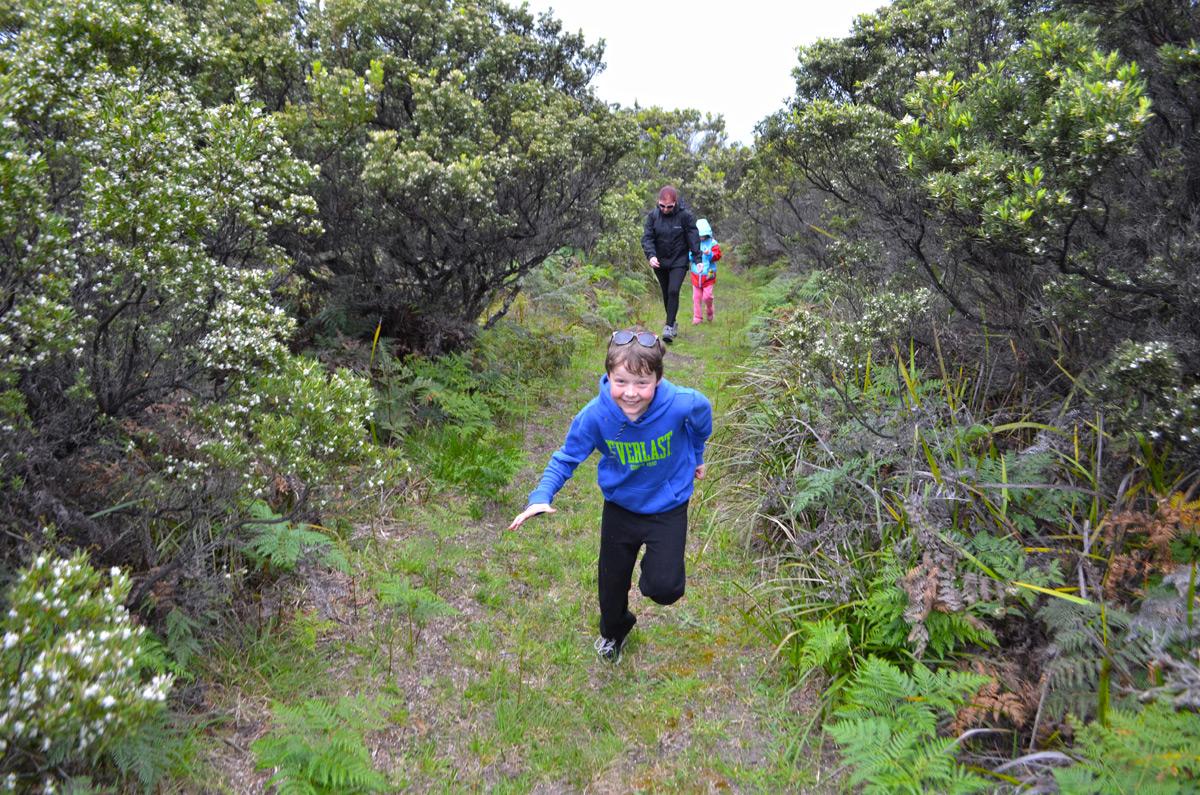 Stringybark Loop Walk - Parker Hill to Parker Inlet
