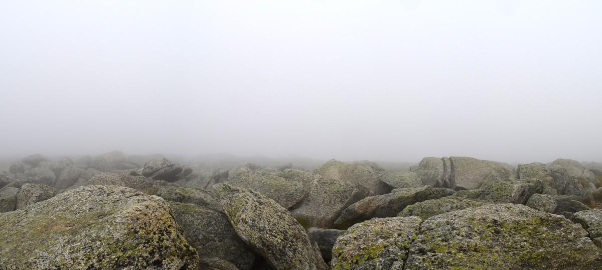 Mount Kosciuszko Summit Hike
