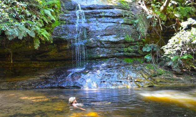 Pool of Siloam – Blue Mountains: A walk and swim with the kids