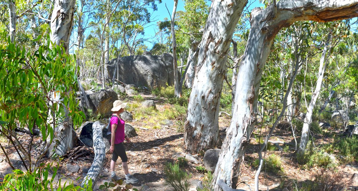 Kosciuszko National Park: A weekend at Boali Lodge in Thredbo – Part 2