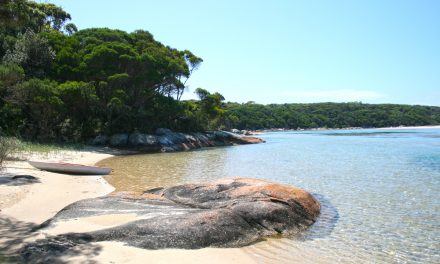 Hiking & Coffee: Wingan Inlet to Red River – Croajingolong National Park (Victoria)