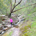 Chatauqua Peak Loop Walk – Grampians National Park – Victoria (Bare Bones Bushwalking)