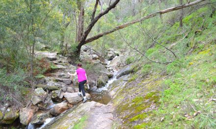 Chatauqua Peak Loop Walk – Grampians National Park – Victoria (Bare Bones Bushwalking)
