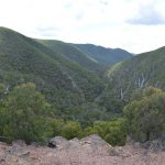 Lerderderg Gorge's Southern Walk: A very thirsty hike with the boys