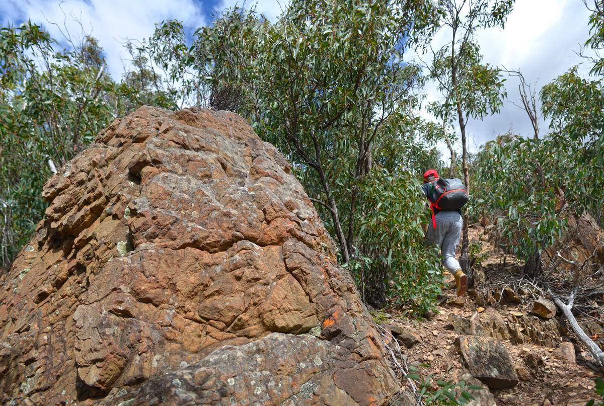 Lerderderg Gorge's Southern Walk - Victoria - Australia