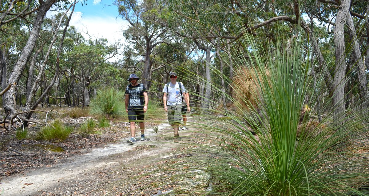 Grass Tree Walk – Brisbane Ranges National Park – Victoria (Bare Bones Bushwalking)
