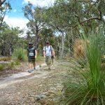 Grass Tree Walk – Brisbane Ranges National Park – Victoria (Bare Bones Bushwalking)