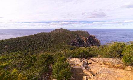 Cape Hauy Track (Tasman National Park): A taste of Tasmania's Three Capes Track