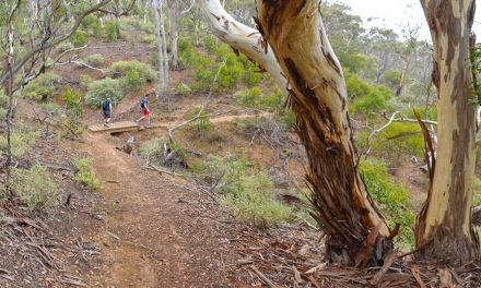 The Island – Werribee Gorge State Park – Victoria (Bare Bones Bushwalking)