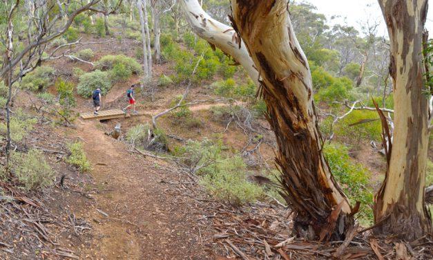 The Island – Werribee Gorge State Park – Victoria (Bare Bones Bushwalking)