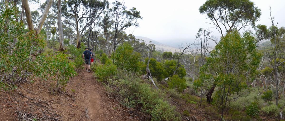 The Island - Werribee Gorge - Victoria