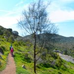 Branding Yard Trail – You Yangs Regional Park – Victoria (Bare Bones Bushwalking)