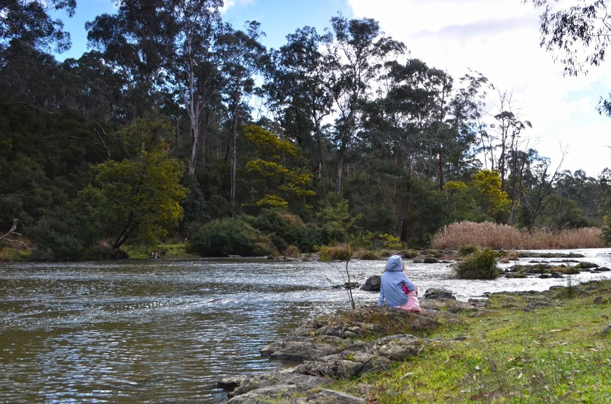 Mount Lofty - Warrandyte State Park - Wonga Park - Victoria