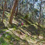The Tunnel – Lerderderg State Park – Victoria (Bare Bones Bushwalking)
